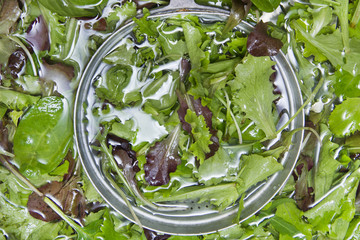 Wash the salad greens