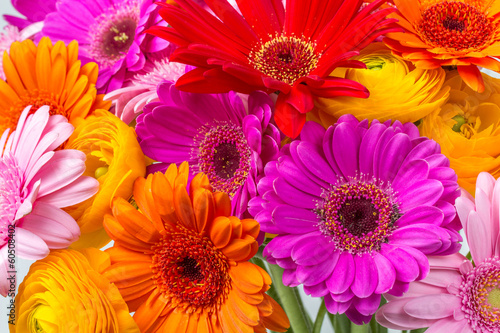 Keuken foto achterwand Gerbera Frühlingsblumen