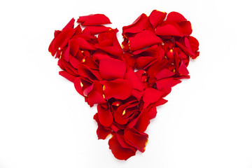 Heart with rose petal