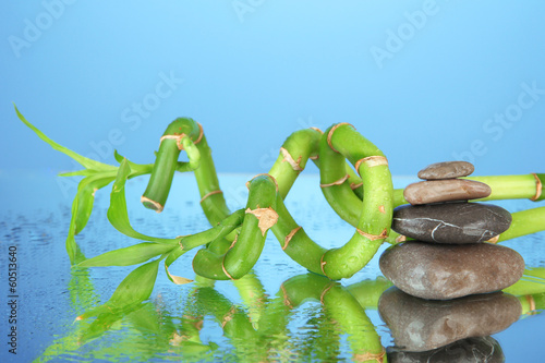 Still life with green bamboo plant and stones,