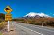 Leinwanddruck Bild - Kiwi and mount Ruapehu