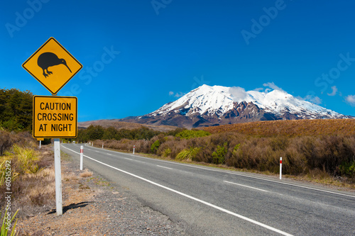 Kiwi and mount Ruapehu - 60515292