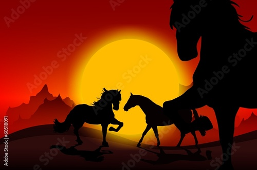 Wild Mustangs Sunset