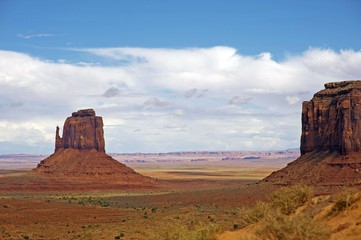 Arizona Raw Landscape