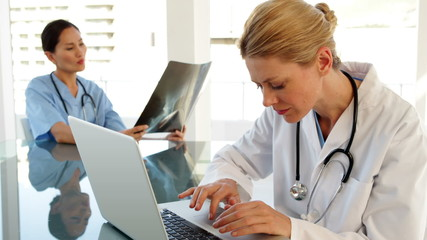Smiling doctor using a laptop sitting at table