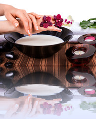 Spa for hands with orchids and bowl of milk