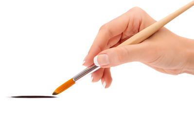 Female hand holding paint brush isolated