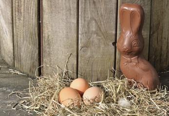 Lapin en chocolat caché près d'oeufs