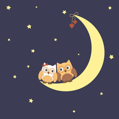 Two owls in love sitting on the moon