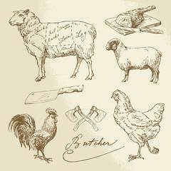 cut of meat - lamb, chicken