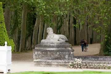 An avenue of trees in the grounds of the chateau of Chenonceau