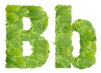 B letter leaves of mint, menthol, isolated on white