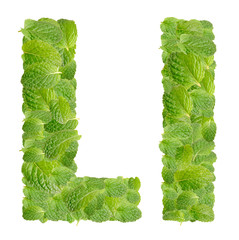 L letter leaves of mint, menthol, isolated on white