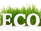 "Word ""Eco"" with fresh grass isolated on white"
