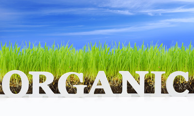 "Word ""Organic"" with fresh grass and blue sky"