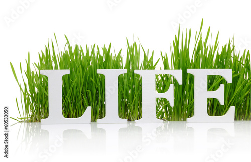 "Word ""Life"" with fresh grass isolated on white"