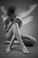 Portrait of girl with wings. Studio fashion photo.