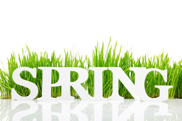"Word ""Spring"" with fresh grass isolated on white"
