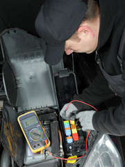 Car fuse inspection