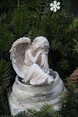 Engel zwischen Tannengrün auf einem Grab