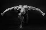 bodybuilding - 60538034