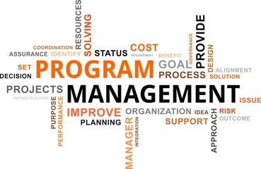 word cloud - program management