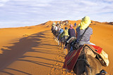 Camel caravan going through the sand dunes in the Sahara Desert,