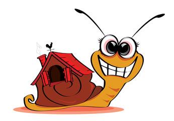 escargot maison