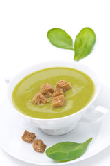 Traditional spinach soup with croutons in a bowl, isolated