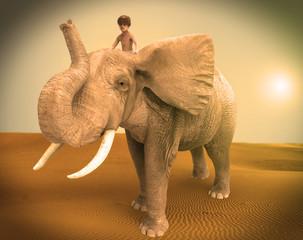 Niño Encima De Un Elefante