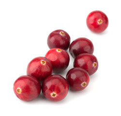 Cranberry isolated on white background closeup