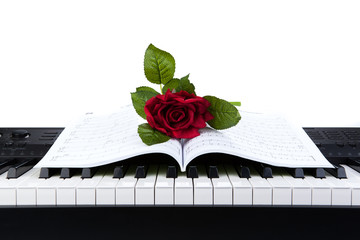 Piano keys and rose flower on note book