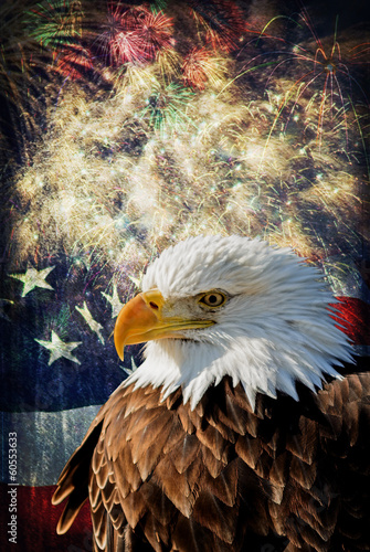 Bald Eagle &  Fireworks