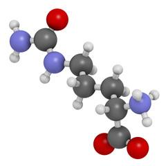 Citrulline amino acid molecule.