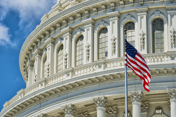 Washington DC Capitol detail