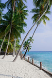 Palmtrees on a white beach in Maldive Islands