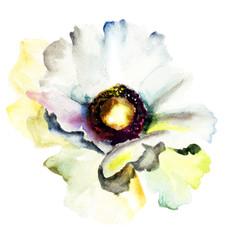 The Bud of white flower