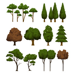 Set of trees for landscape