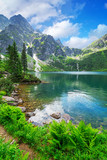 Eye of the Sea lake in Tatra mountains, Poland - 60564867