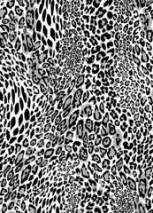 graphic leopard