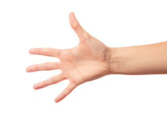 Human hand five fingers
