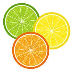 Colorful citrus slices set