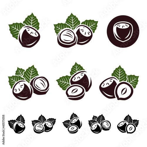 Hazelnut nuts set. Vector