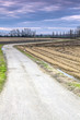 Lomellina countryside winter panorama color image