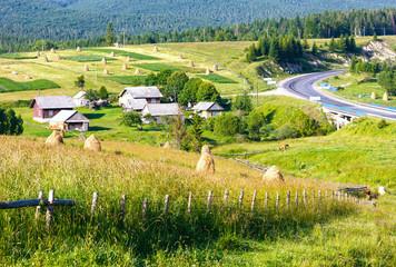 Summer mountain rural view with haystacks (Carpathian, Ukraine)