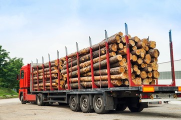 LKW, Holztransport