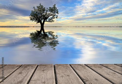 Fotobehang Een Hoekje om te Dromen reflejos naturales en el agua