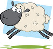 Funny Black Head Sheep Cartoon Mascot Character Jumping