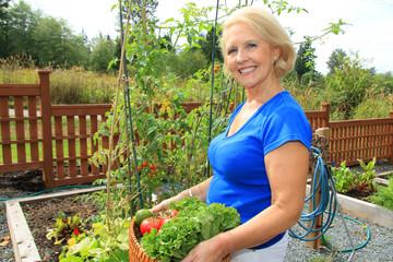 Senior gardener and vegetables.