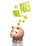 money pig with best price